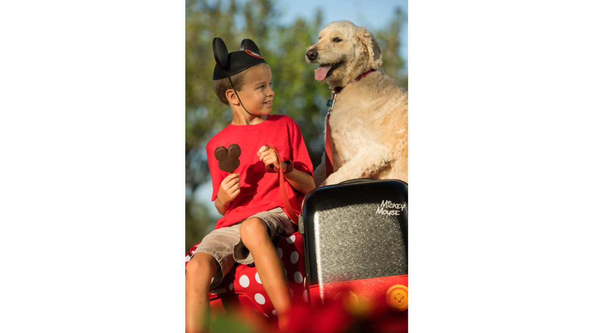 Dogs Welcome at Select Walt Disney World Hotels Starting Oct. 15 2