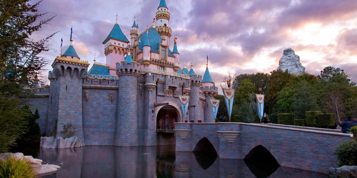 Disneyland Suspends Sale For New Annual Passes 1