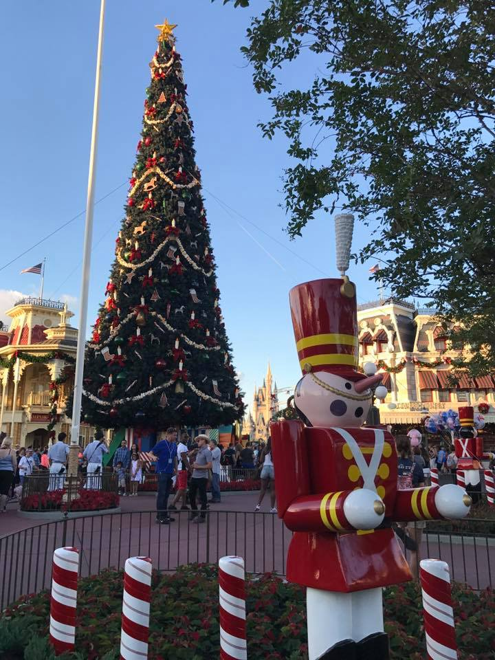 It's Beginning to Look a lot Like Christmas..... at the Magic Kingdom! (photos) 9