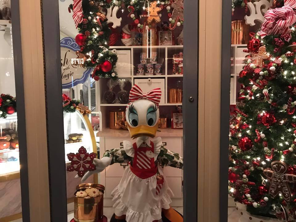It's Beginning to Look a lot Like Christmas..... at the Magic Kingdom! (photos) 5