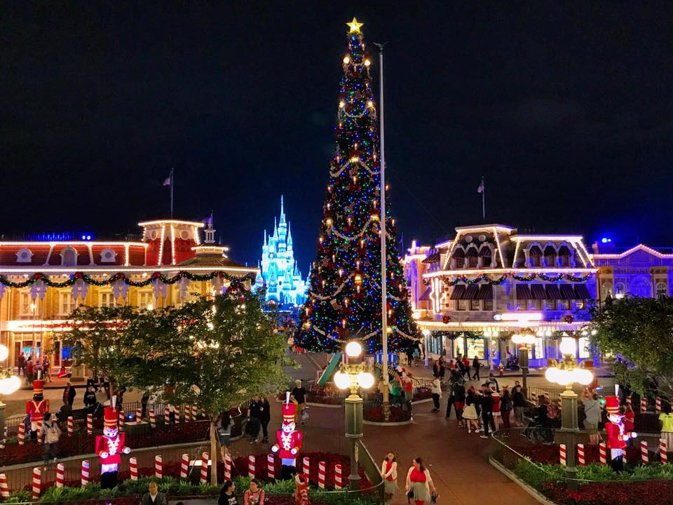 TMSM's Adventures in Florida Living ~ Getting Closer to Christmas 17