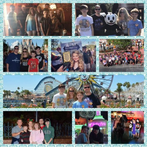 TMSM's Adventures in Florida Living ~ We're Baaaack!! 30