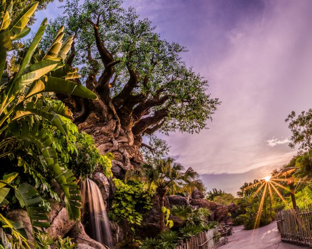 Disney's Animal Kingdom Will Mark 20th Anniversary With A 'Party For the Planet' April 22-May 5 5
