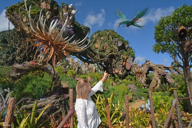 Flying Banshee Magic Shot from Disney's PhotoPass in Pandora – The World of Avatar at Disney's Animal Kingdom