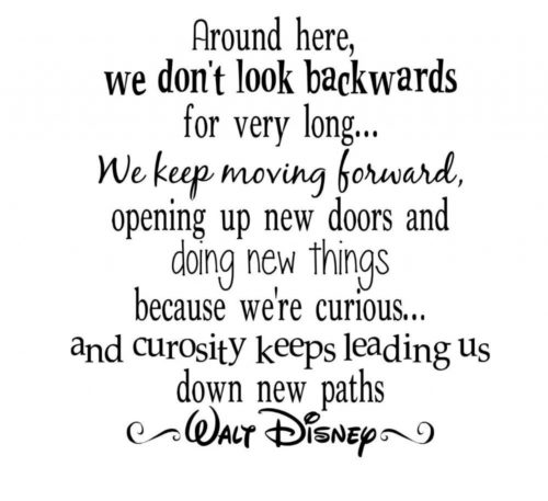 TMSM's Adventures in Florida Living ~ Keep Moving Forward 20