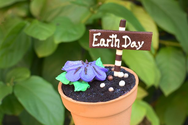 Earth Day Cupcake at Disney's Contemporary Resort