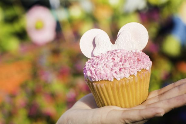 Millennial Pink Cupcake at Fountain View at Epcot