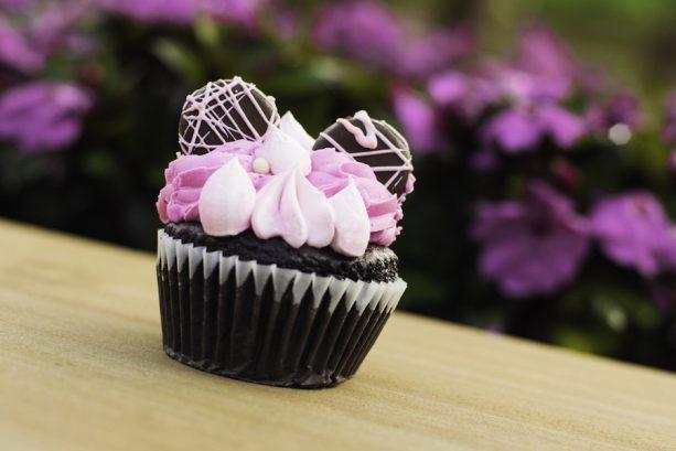 Millennial Pink Chocolate Cupcake at Riverside Mill at Disney's Port Orleans – Riverside Resort