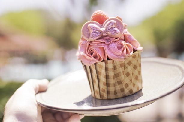 Millennial Pink Raspberry Chocolate Cupcake at The Mara at Disney's Animal Kingdom Lodge