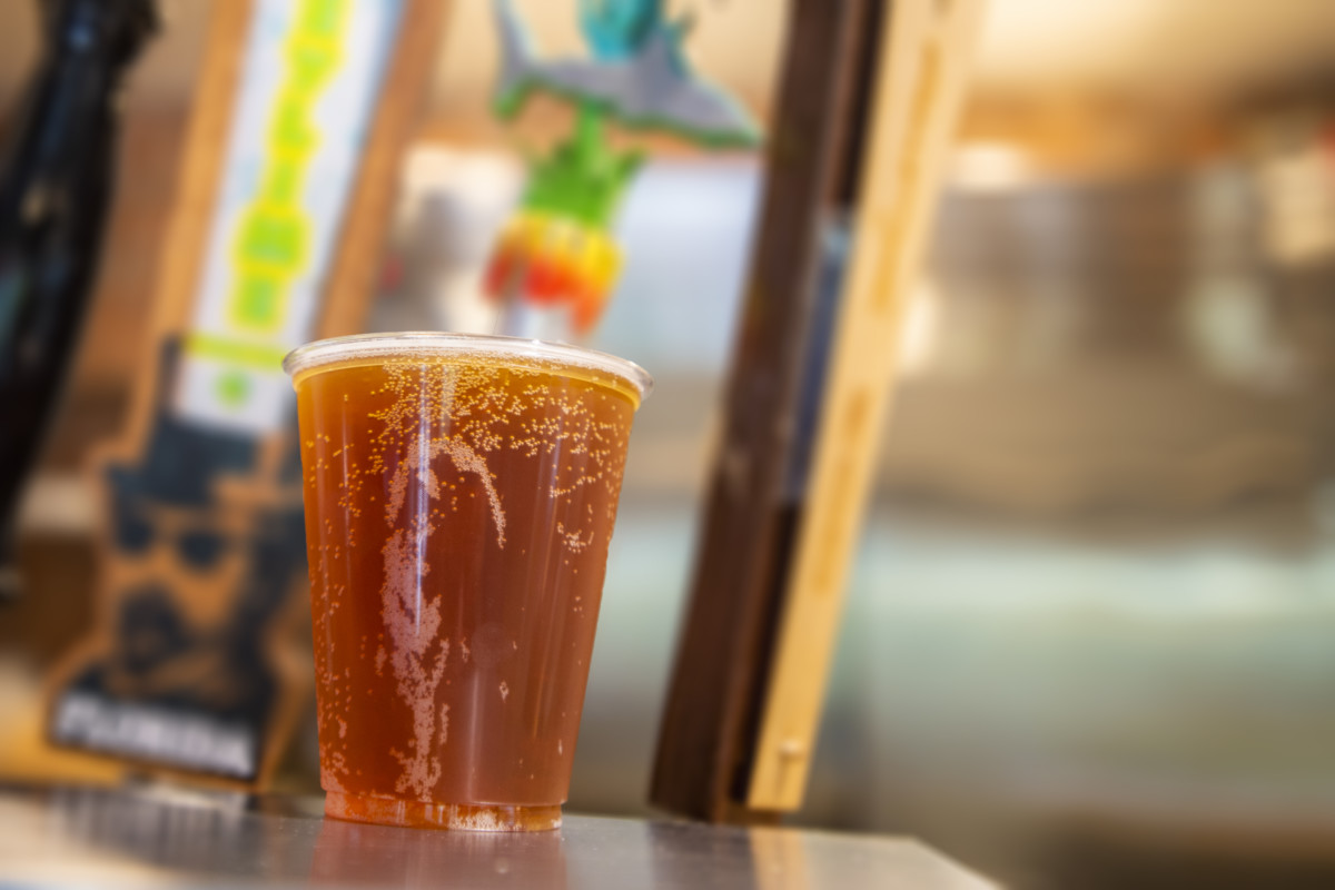 Free Beer All Summer Long for SeaWorld Orlando Park Guests 3