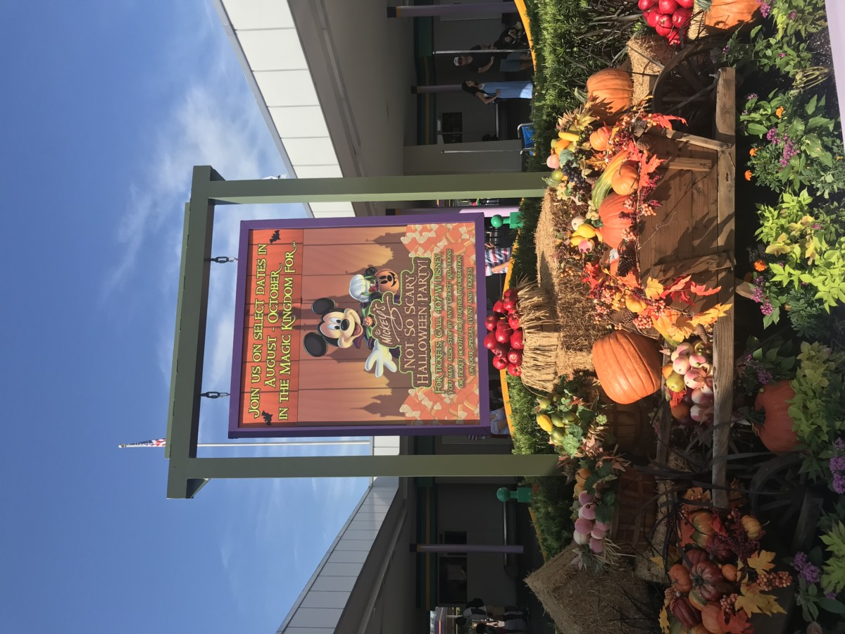 Halloween Has Arrived at the Magic Kingdom 2