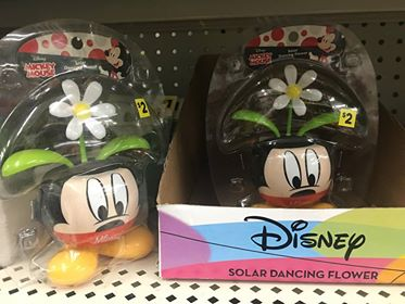 Disney Garden at Dollar General 5