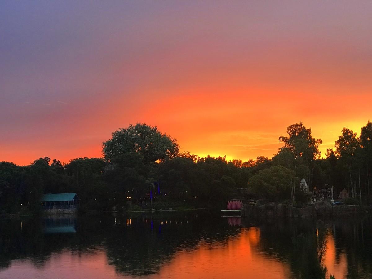 Sunset at Animal Kingdom 1