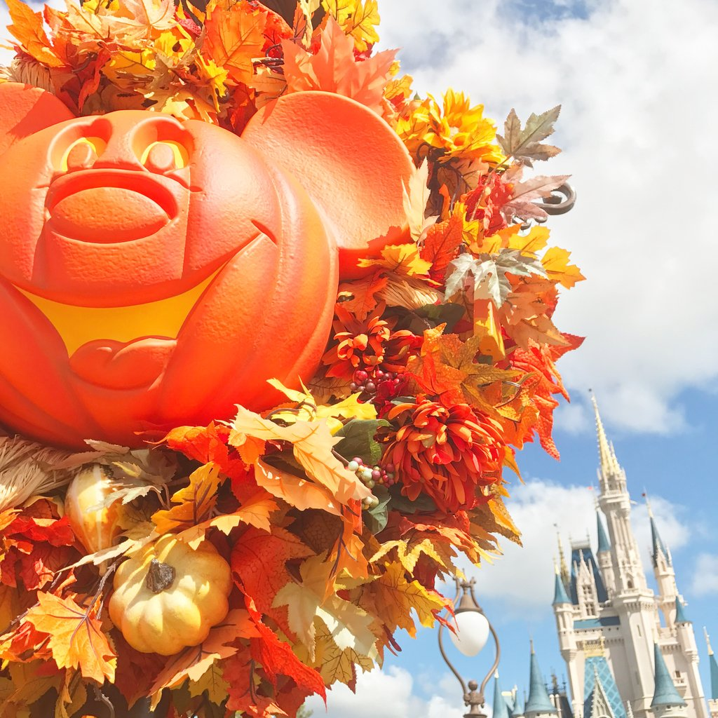 The Tricks and the Treats - Foodie Highlights from MNSSHP 19