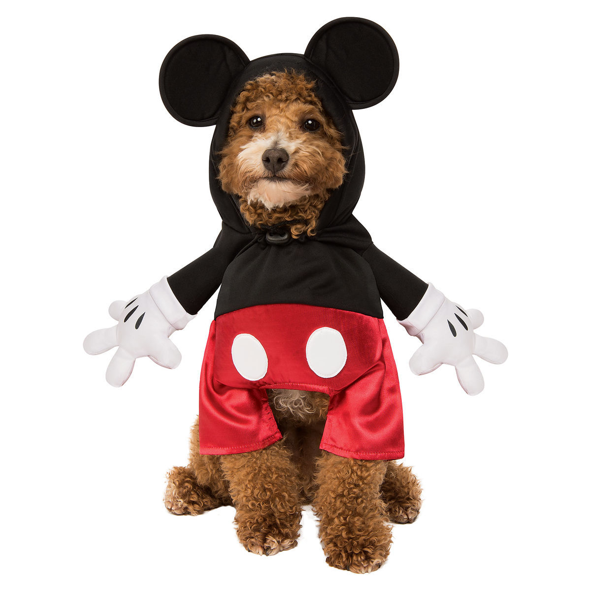Pet Costumes With Disney Style! 4