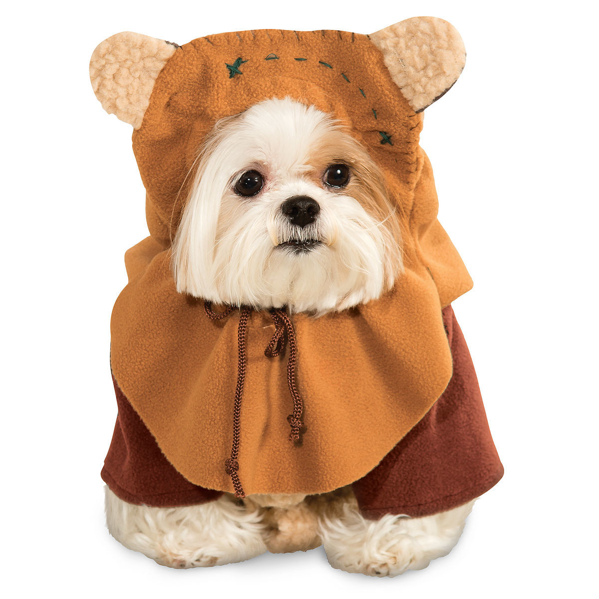 Pet Costumes With Disney Style! 5