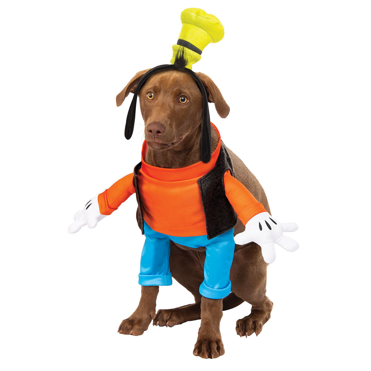 Pet Costumes With Disney Style! 6