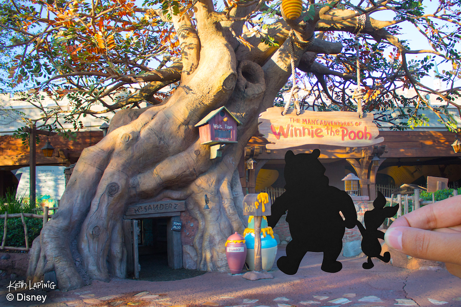 Disney Parks in Silhouette: A Simply Magical Kingdom 3