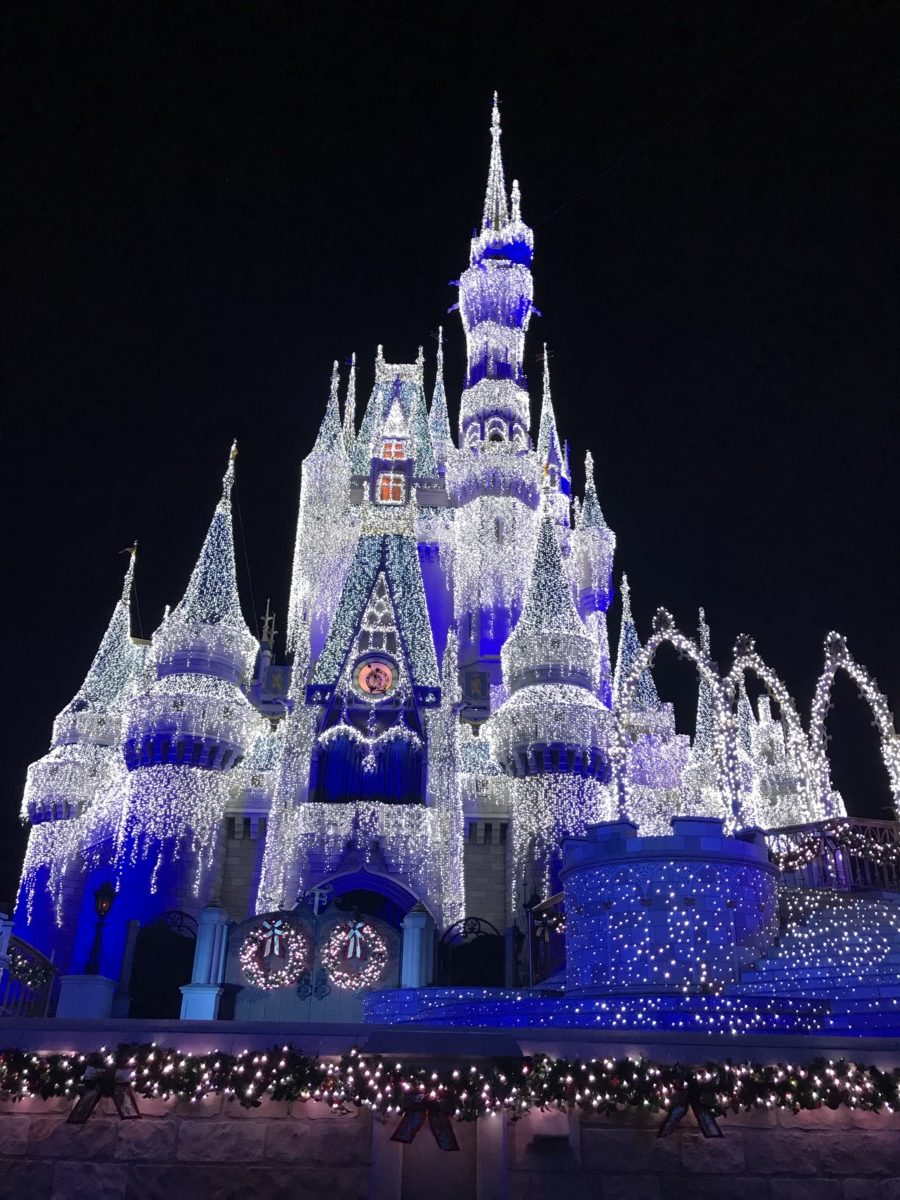 Practicing Patience in the Parks this Holiday Season: Part 2 Navigating the Parks 4