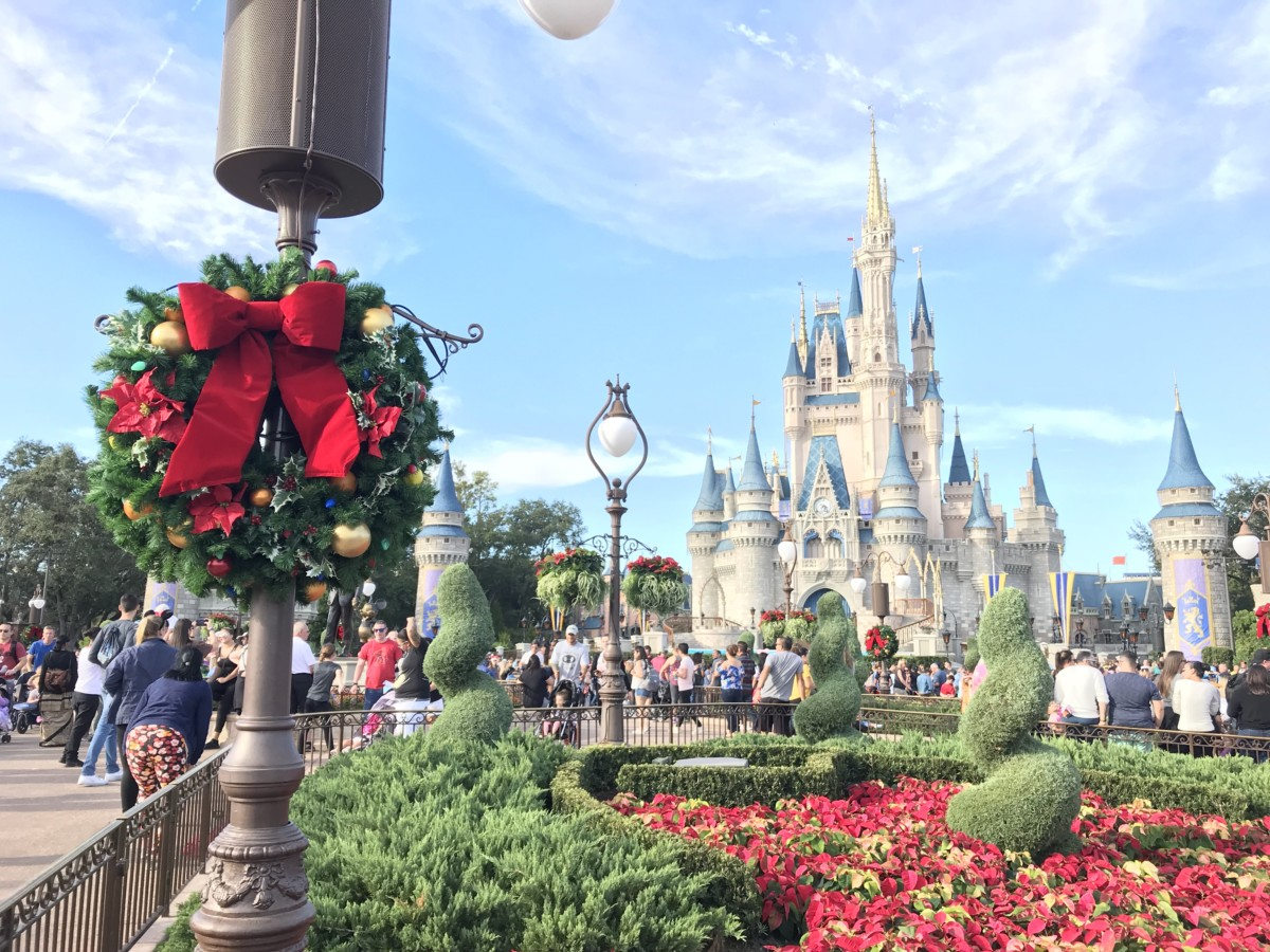 Practicing Patience in the Parks this Holiday Season: Part 2 Navigating the Parks 2