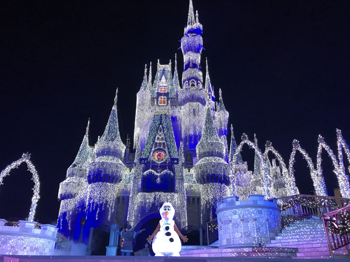 Practicing Patience in the Parks this Holiday Season: Part 2 Navigating the Parks 1