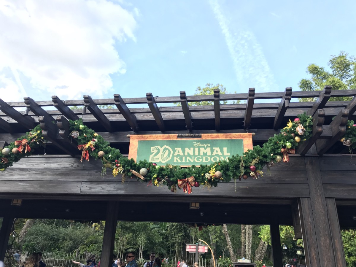 Holiday Decor at Animal Kingdom 8