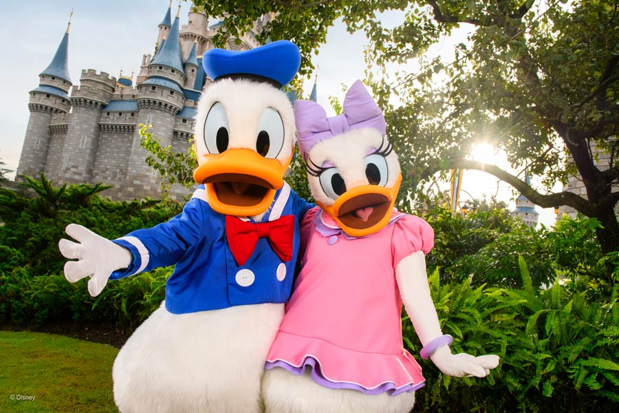 Donald and Daisy Duck at Magic Kingdom Park