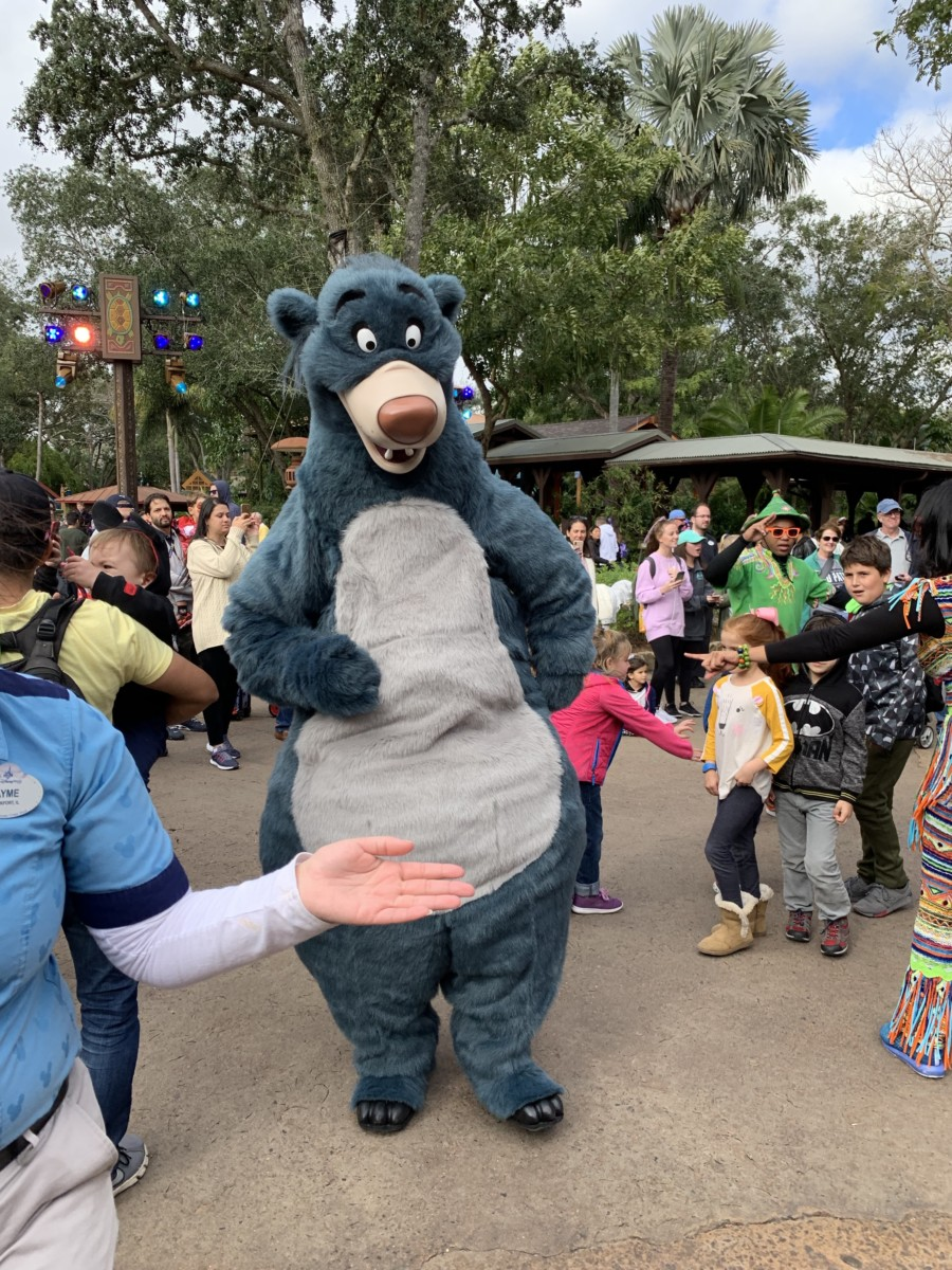 Hakuna Matata Time Dance Party at Animal Kingdom #nowmorethanever 6