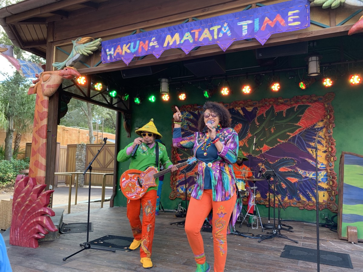 Hakuna Matata Time Dance Party at Animal Kingdom #nowmorethanever 2