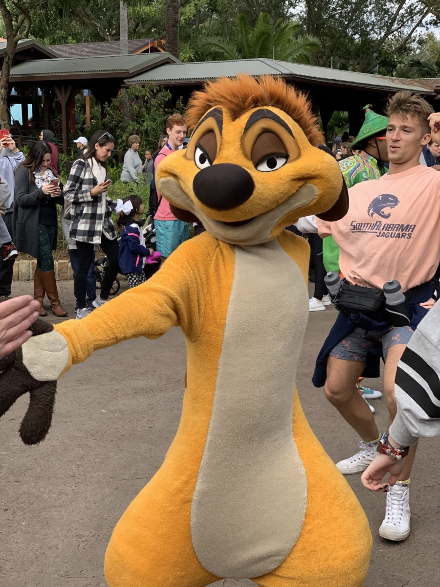 Hakuna Matata Time Dance Party at Animal Kingdom #nowmorethanever 3