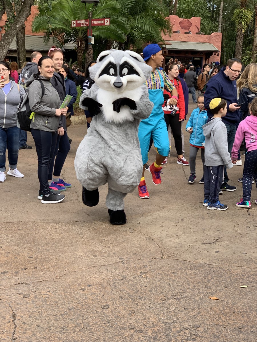 Hakuna Matata Time Dance Party at Animal Kingdom #nowmorethanever 5