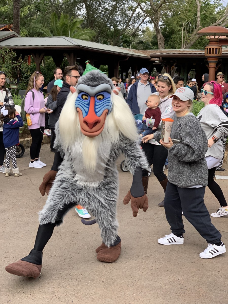 Hakuna Matata Time Dance Party at Animal Kingdom #nowmorethanever 4