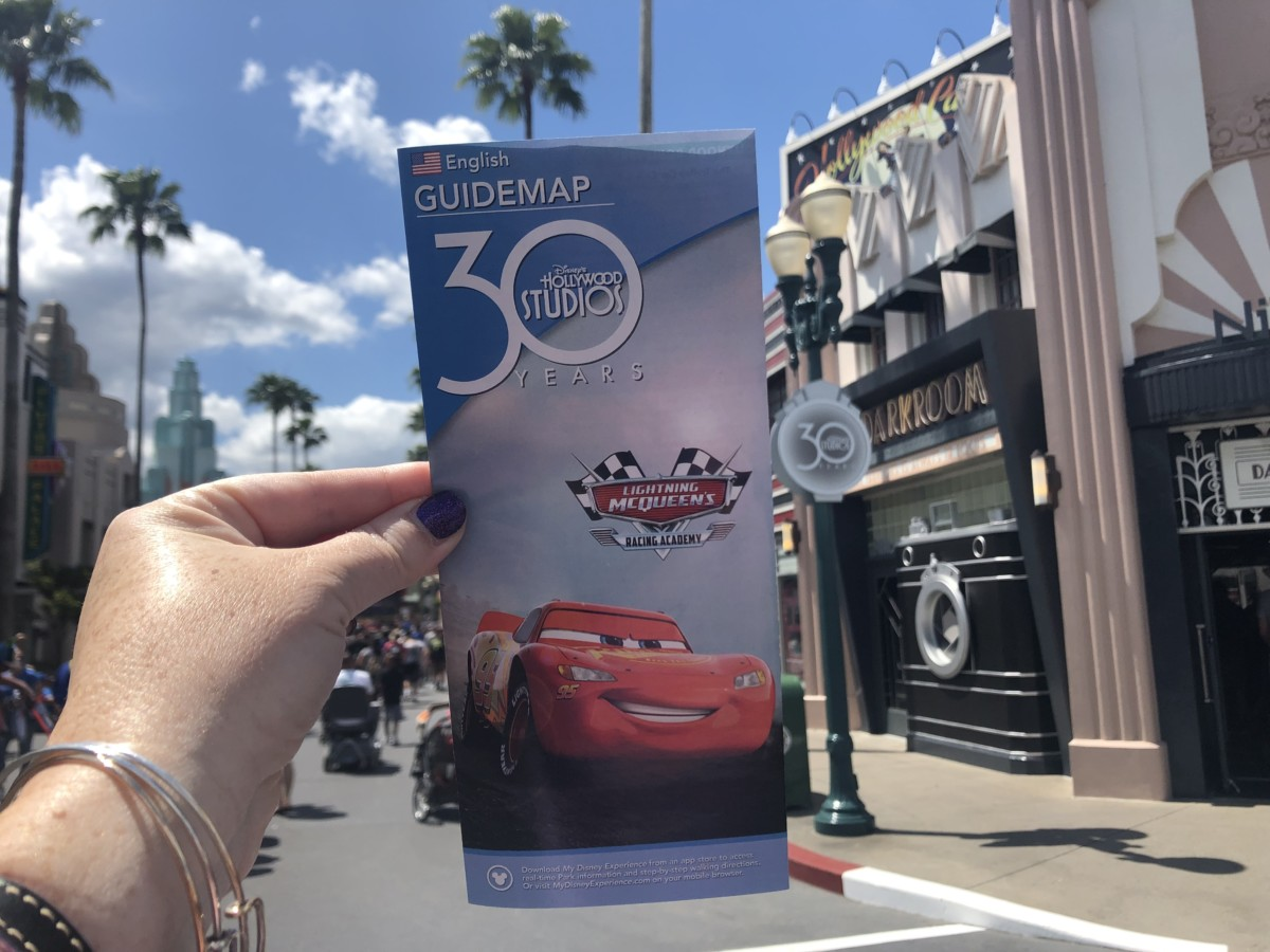 TMSM's Adventures in Florida Living- Disney, Disney & More Disney 1