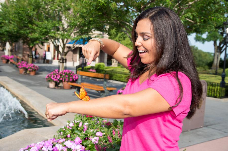 Top Picks for Spring Break Photo Opportunities at Walt Disney World Resort 8