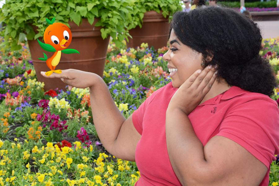 Top Picks for Spring Break Photo Opportunities at Walt Disney World Resort 9
