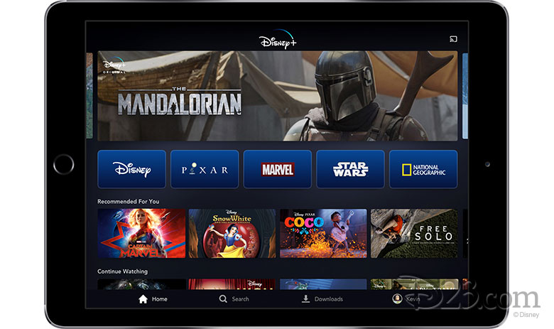 All The Details About Disney+ Announced 3