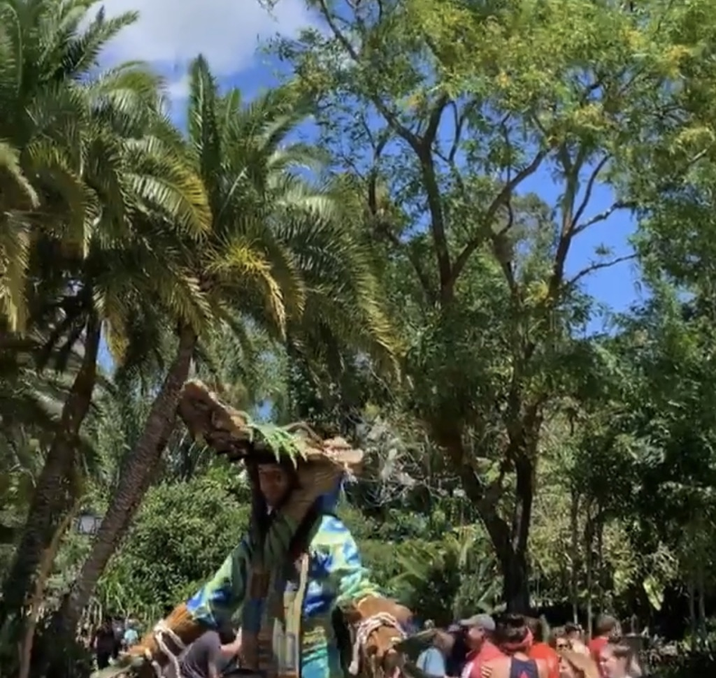 Party For The Planet At Animal Kingdom 3
