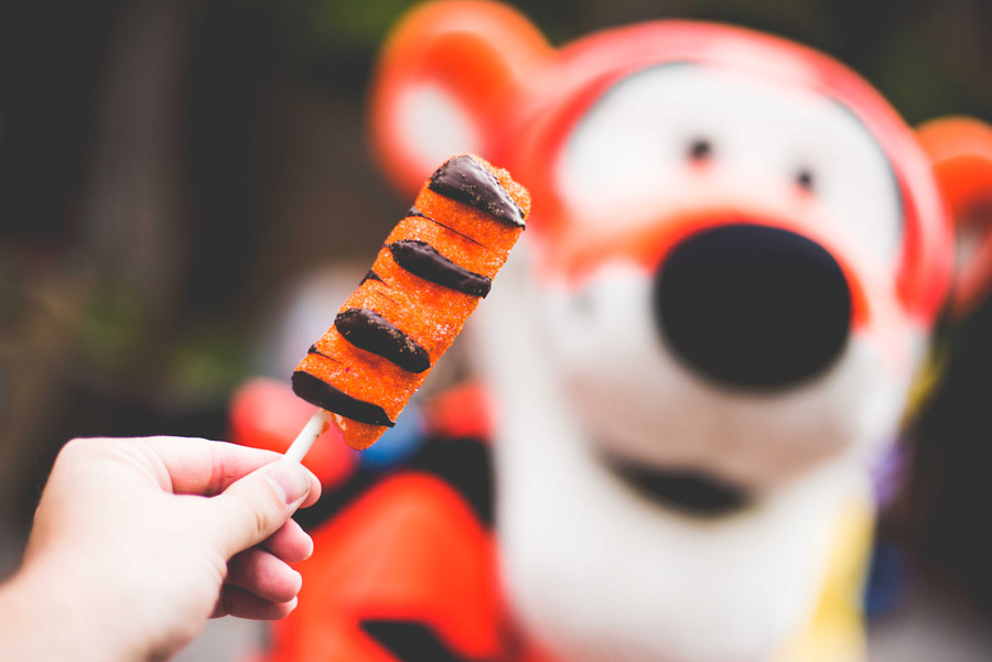 Tigger Tail from Hunny Spot at Disneyland Park