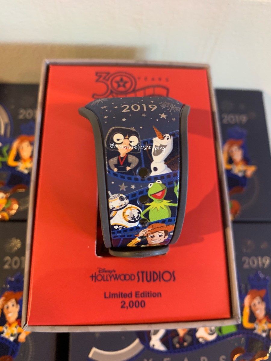 Brand New Merchandise For Disney's Hollywood Studios 30th Anniversary 13