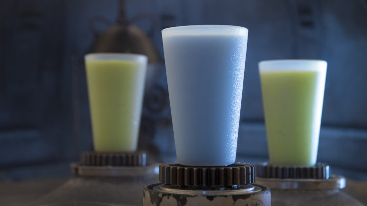 Star Wars: Galaxy's Edge Serves New and Exotic Flavors from a Galaxy Far, Far Away 44