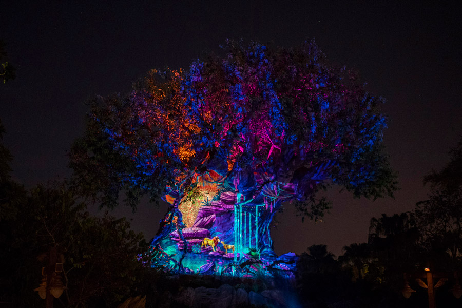 Experience 'Rivers of Light: We Are One' and More New Magic Starting This Weekend at Disney's Animal Kingdom 6
