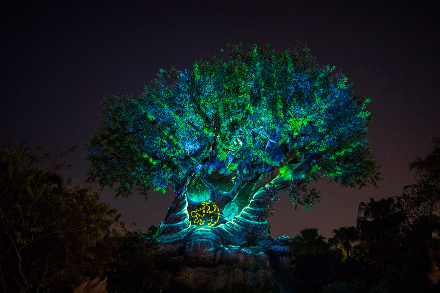 Experience 'Rivers of Light: We Are One' and More New Magic Starting This Weekend at Disney's Animal Kingdom 7