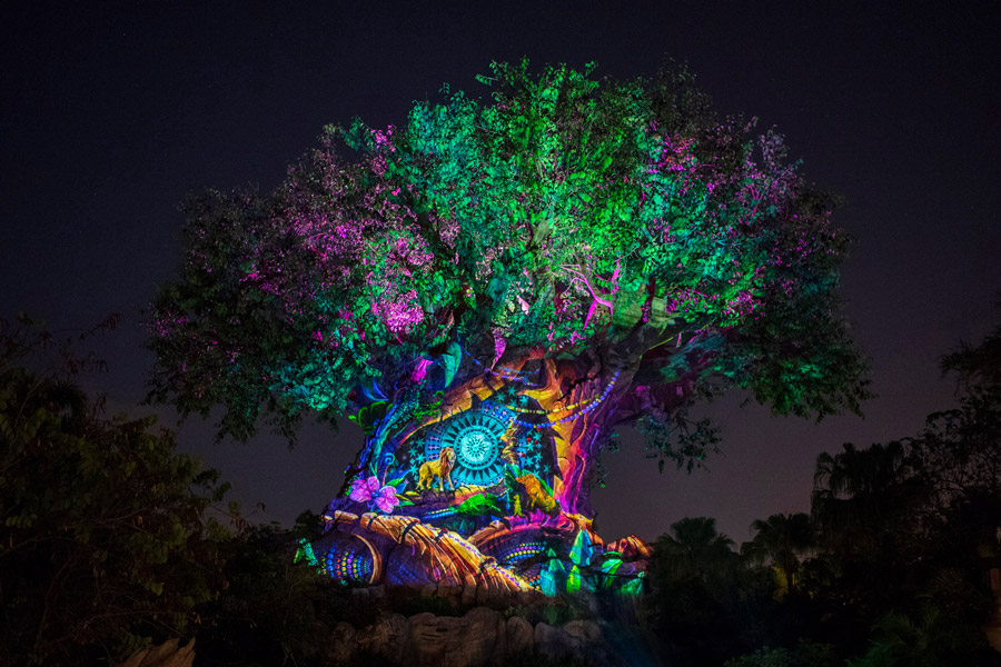 Experience 'Rivers of Light: We Are One' and More New Magic Starting This Weekend at Disney's Animal Kingdom 5