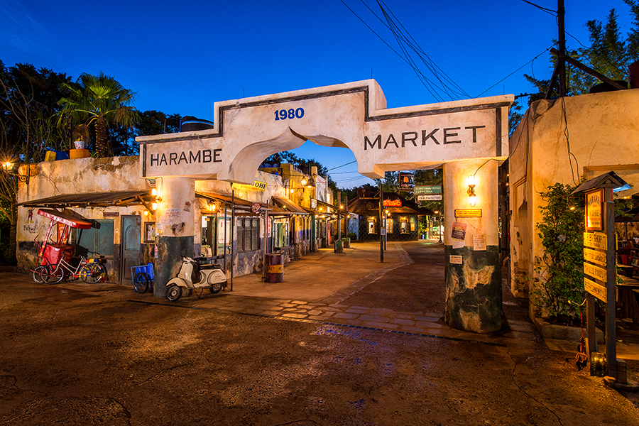 Circle of Flavors: Harambe at Night at Disney's Animal Kingdom Theme Park