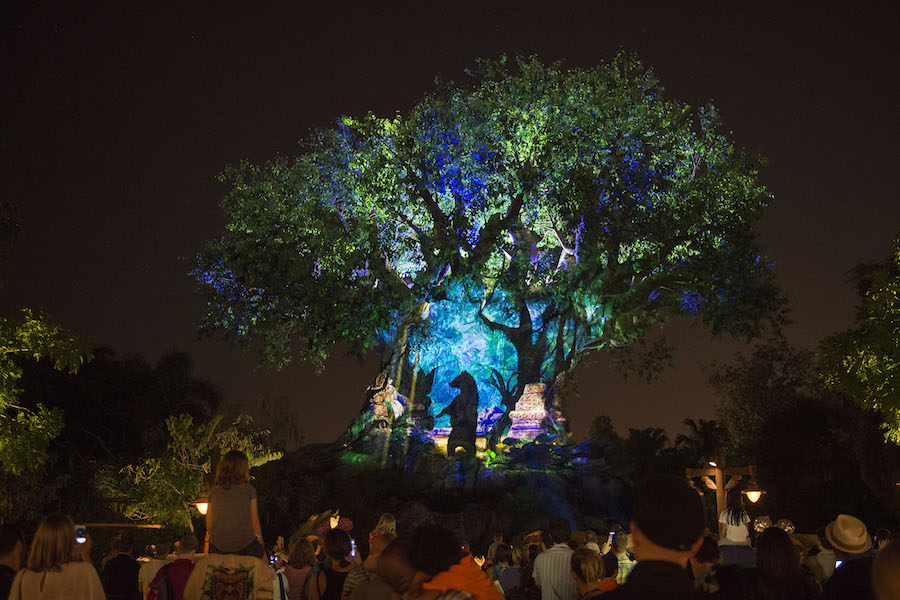 The Ultimate Insider's Guide to Special Events at Walt Disney World Resort 1