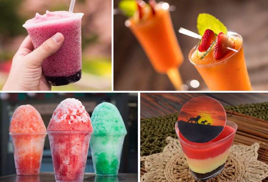 Various Cold Offerings from Epcot
