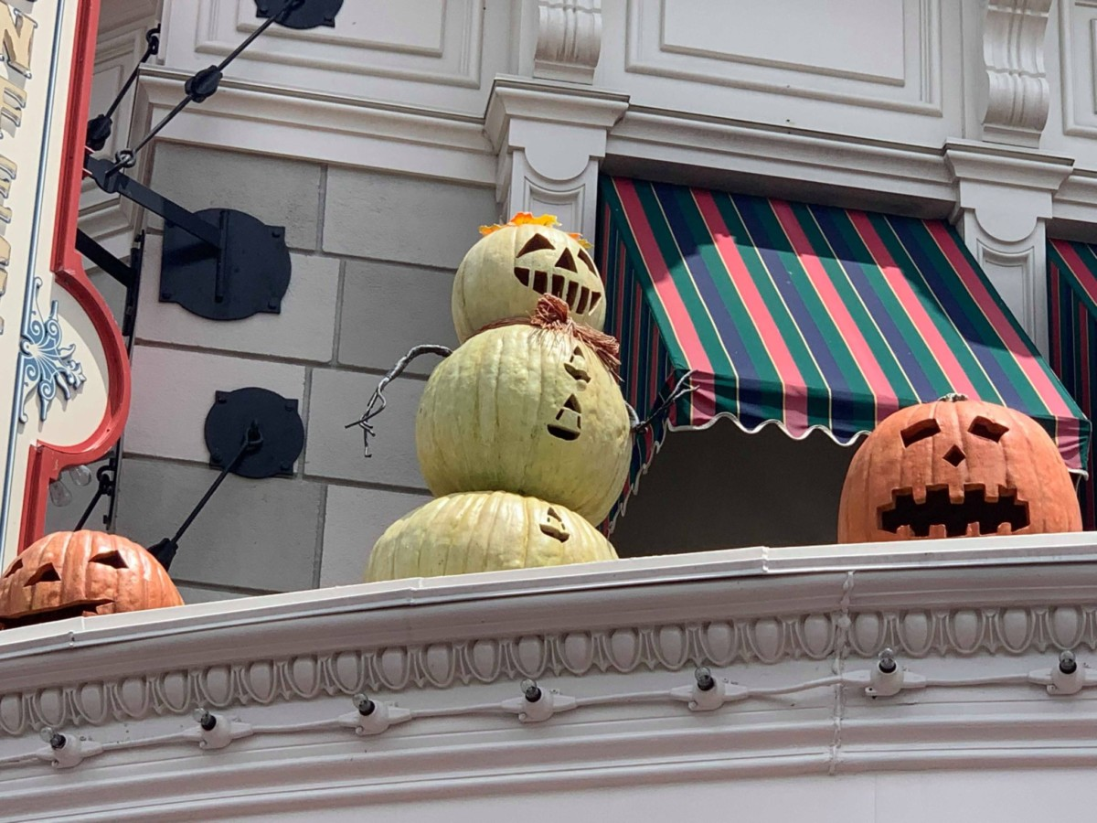 Pumpkins on Main Street USA, Magic Kingdom 4