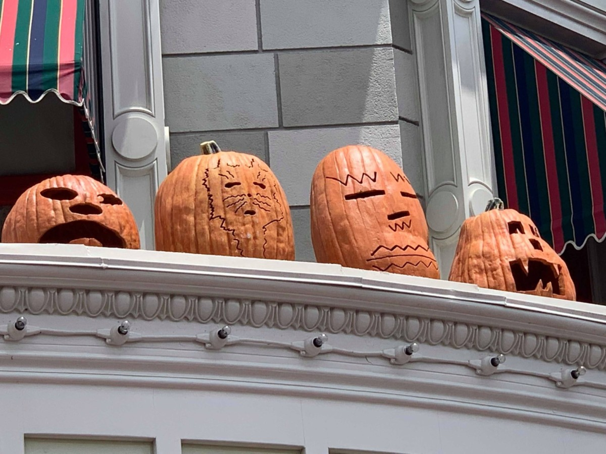 Pumpkins on Main Street USA, Magic Kingdom 6