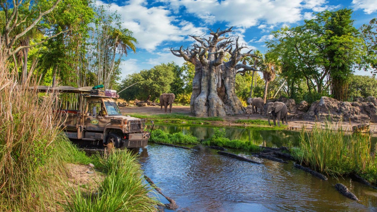 Top 5 Things To Do At Walt Disney World In The Rain 5