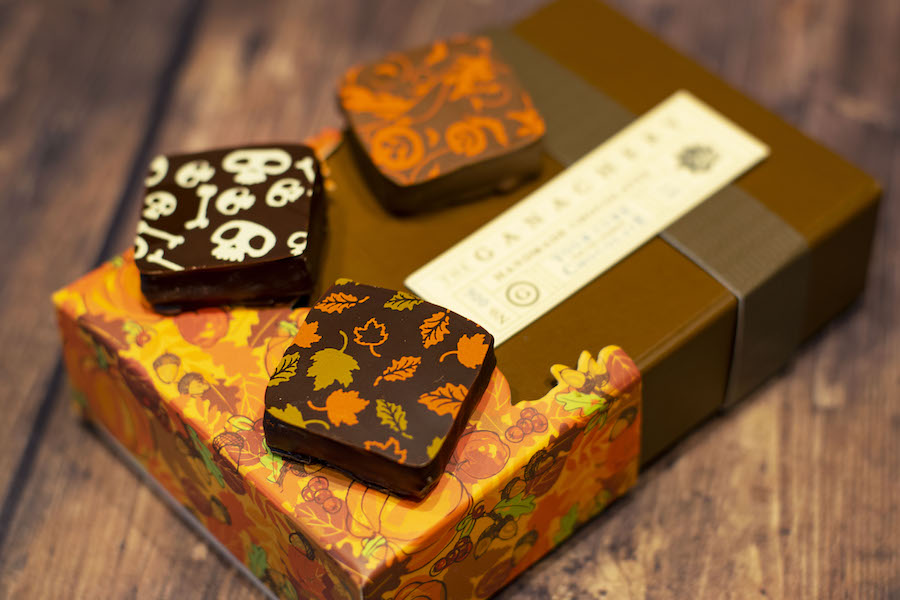 Fall Ganache Squares from The Ganachery for WonderFall Flavors at Disney Springs 2019